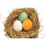 Edelstein-Eier